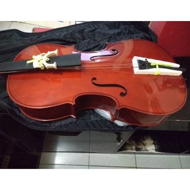 Cello Karl Steinhoff 4/4